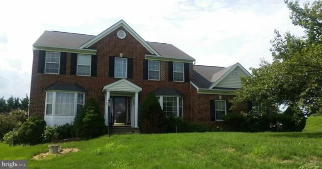 154 Wampee Court, WESTMINSTER, MD 21157 (#MDCR182358) :: Remax Preferred | Scott Kompa Group