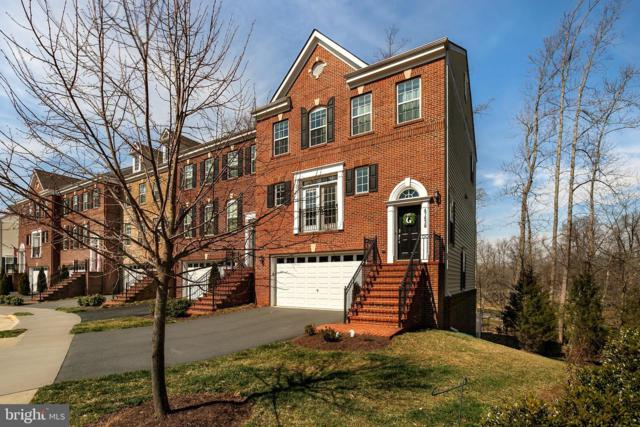 47638 Leopards Chase Terrace, STERLING, VA 20165 (#VALO355960) :: The Gus Anthony Team