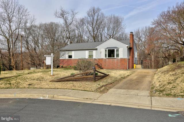 410 Catherine Avenue, LINTHICUM, MD 21090 (#MDAA378022) :: Remax Preferred | Scott Kompa Group