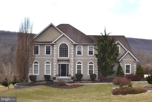 1481 Stoney Mountain Way, DAUPHIN, PA 17018 (#PADA107908) :: Keller Williams of Central PA East