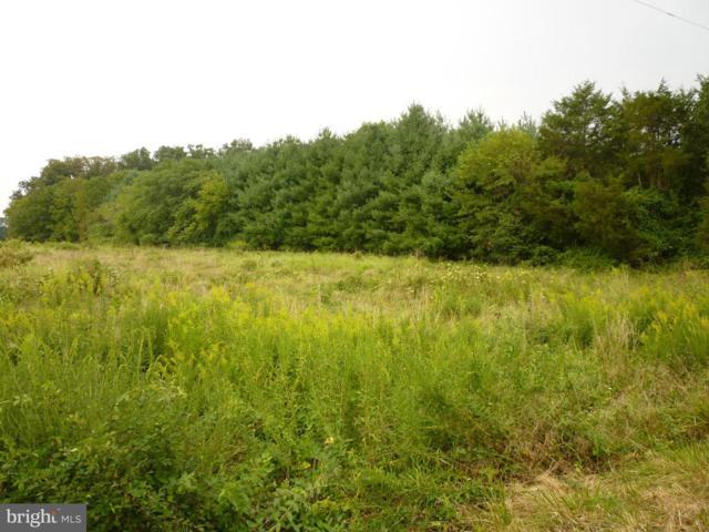 0 Bristersburg Road, CATLETT, VA 20119 (#VAFQ155842) :: The Matt Lenza Real Estate Team