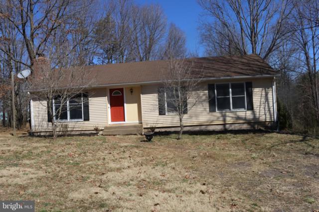 10272 Rodos Road, RIXEYVILLE, VA 22737 (#VACU134984) :: Colgan Real Estate