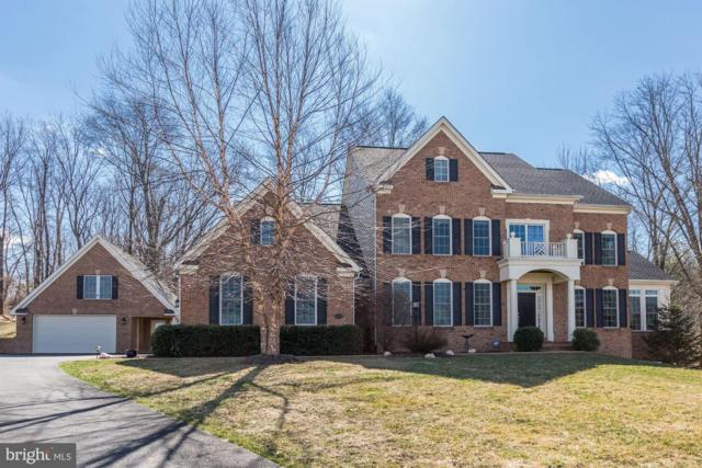 16118 Waterford Creek Circle, HAMILTON, VA 20158 (#VALO356032) :: Colgan Real Estate