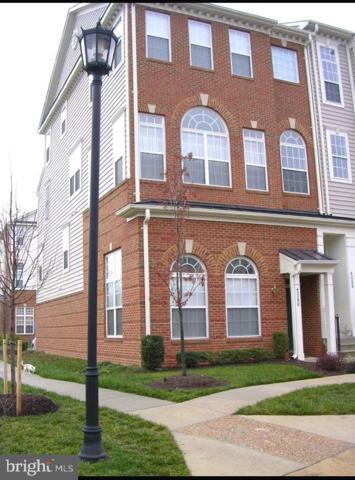 42290 Terrazzo Terrace, ALDIE, VA 20105 (#VALO356052) :: The Greg Wells Team