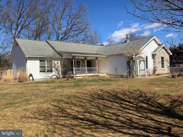 41 Wild Cherry Road, SCHUYLKILL HAVEN, PA 17972 (#PASK124438) :: Ramus Realty Group