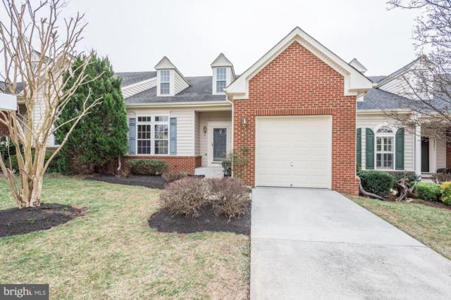44473 Tyrone Terrace, ASHBURN, VA 20147 (#VALO356070) :: Bic DeCaro & Associates