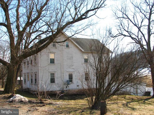 376 Dieberts Valley Road, SCHUYLKILL HAVEN, PA 17972 (#PASK124442) :: The Heather Neidlinger Team With Berkshire Hathaway HomeServices Homesale Realty