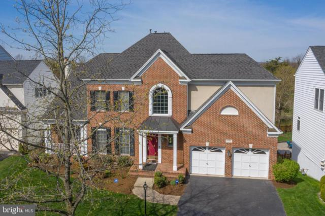 25793 Planting Field Drive, CHANTILLY, VA 20152 (#VALO356124) :: Colgan Real Estate