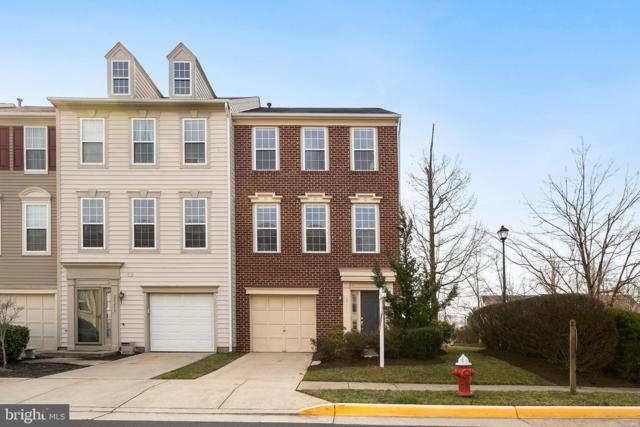 22211 Great Trail Terrace, STERLING, VA 20164 (#VALO356146) :: The Putnam Group