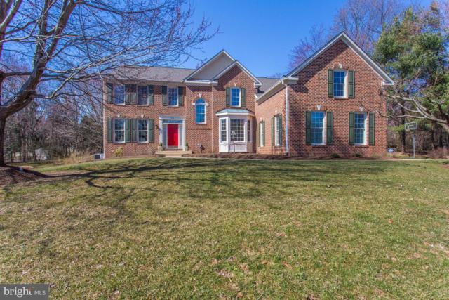 814 Sherlin Lane, GREAT FALLS, VA 22066 (#VAFX1001832) :: Great Falls Great Homes