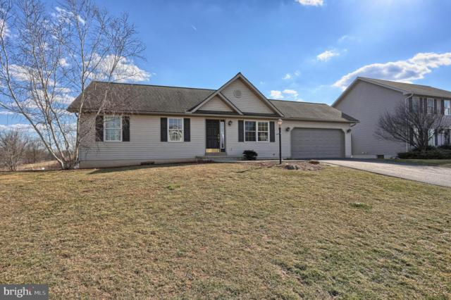 29 Elizabeth Run Drive, FREDERICKSBURG, PA 17026 (#PALN104940) :: The Heather Neidlinger Team With Berkshire Hathaway HomeServices Homesale Realty