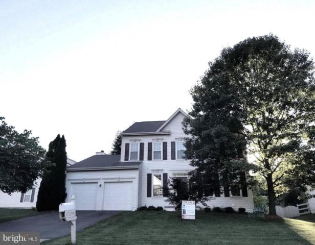17295 Arrowood Place, ROUND HILL, VA 20141 (#VALO356162) :: The Greg Wells Team