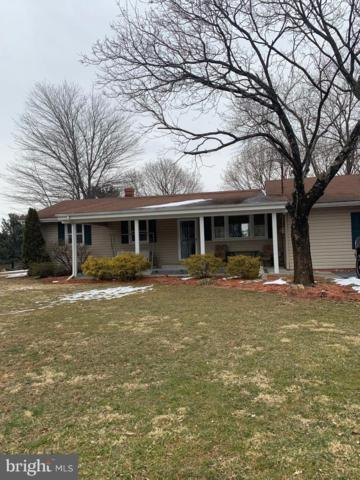 8517 Chestnut Grove Road, FREDERICK, MD 21701 (#MDFR234562) :: RE/MAX Plus