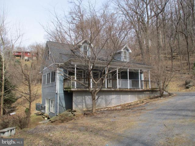 137 Orchard Logoon Drive, LINDEN, VA 22642 (#VAWR134052) :: Remax Preferred | Scott Kompa Group