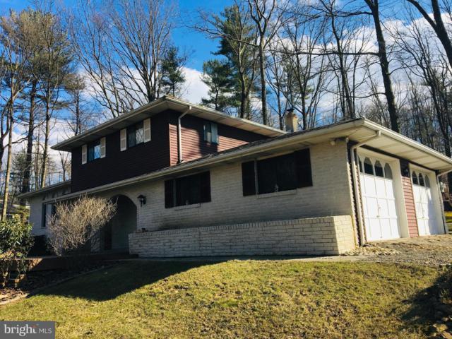 109 Hogan Drive, AUBURN, PA 17922 (#PASK124456) :: Ramus Realty Group