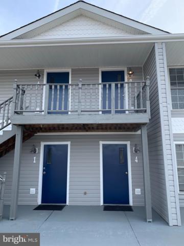 13705 Anna Point Lane, MINERAL, VA 23117 (#VASP204298) :: Cristina Dougherty & Associates