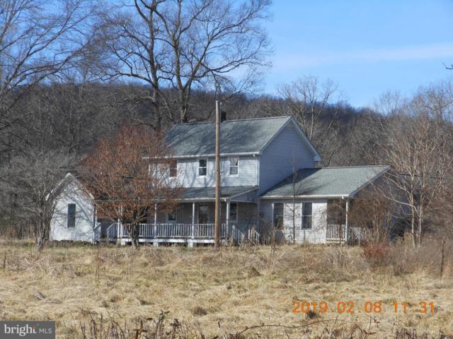 23140 Cedar Mountain, RAPIDAN, VA 22733 (#VACU134996) :: SURE Sales Group