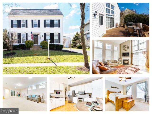 43225 Edgartown Street, CHANTILLY, VA 20152 (#VALO356194) :: Stello Homes