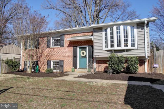 417 Branch Drive, SILVER SPRING, MD 20901 (#MDMC624816) :: Remax Preferred | Scott Kompa Group