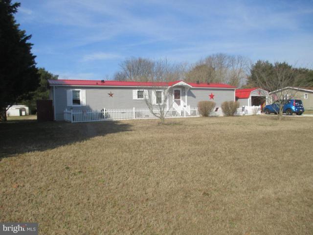 22485 Raven Circle, LINCOLN, DE 19960 (#DESU134616) :: Shamrock Realty Group, Inc