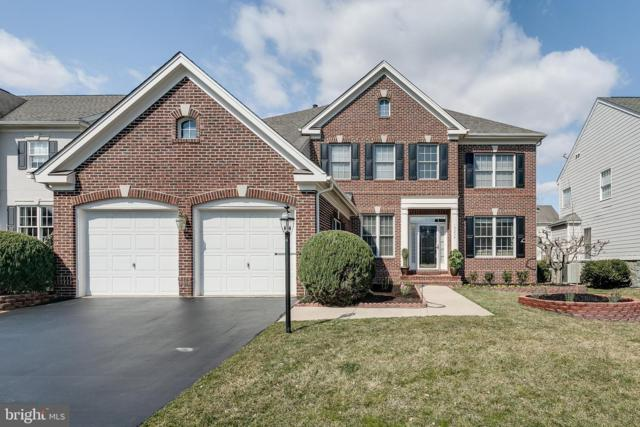 19234 Coton Hall Street, LEESBURG, VA 20176 (#VALO356270) :: The Greg Wells Team