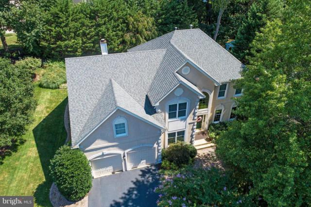 21362 Sparrow Place, POTOMAC FALLS, VA 20165 (#VALO356280) :: The Speicher Group of Long & Foster Real Estate