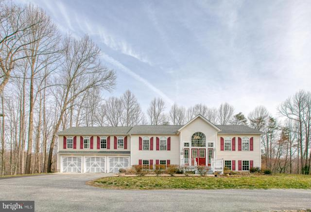 40 Knotsanchor Lane, FREDERICKSBURG, VA 22405 (#VAST202050) :: Colgan Real Estate