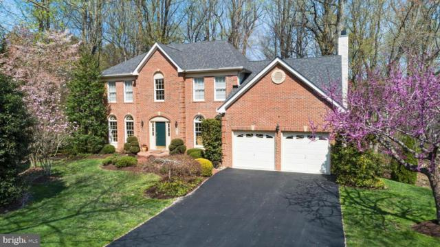 11 Colts Neck Court, EDGEWATER, MD 21037 (#MDAA378420) :: Gail Nyman Group