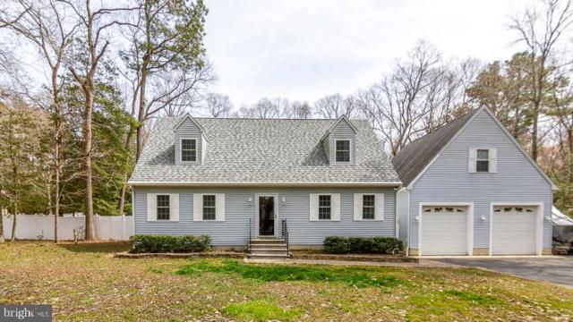 31229 Beaver Circle, LEWES, DE 19958 (#DESU134658) :: The Allison Stine Team