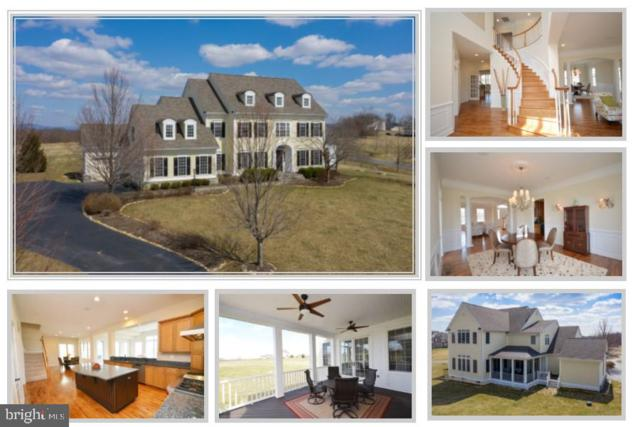 13291 April Circle, LOVETTSVILLE, VA 20180 (#VALO356338) :: Great Falls Great Homes