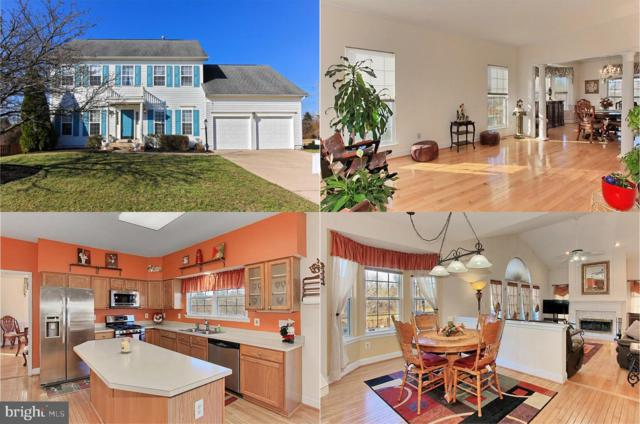 20853 Cardiff Court, ASHBURN, VA 20147 (#VALO356358) :: Bic DeCaro & Associates
