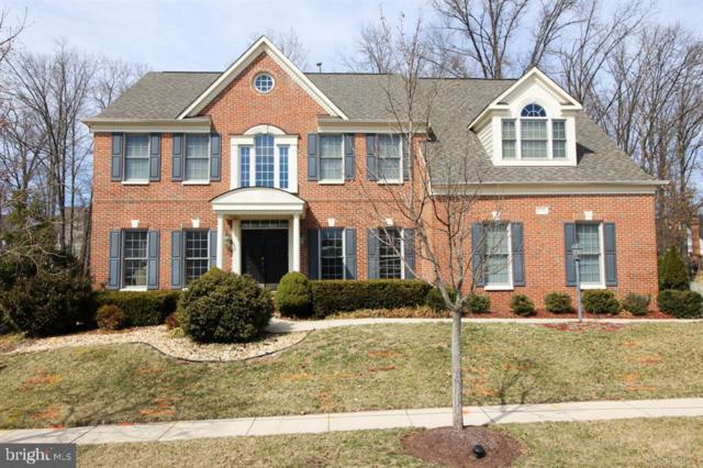 43348 St Andrews Street, CHANTILLY, VA 20152 (#VALO356364) :: Circadian Realty Group
