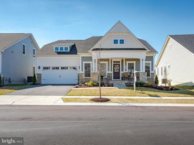 2944 Levee Drive, ODENTON, MD 21113 (#MDAA378488) :: Colgan Real Estate
