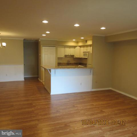 11 Wingate Court, BLUE BELL, PA 19422 (#PAMC556858) :: Colgan Real Estate