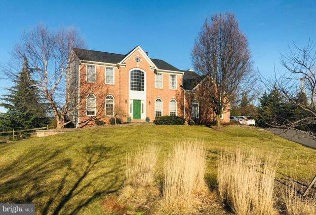 44354 Oldetowne Place, ASHBURN, VA 20147 (#VALO356394) :: Bic DeCaro & Associates