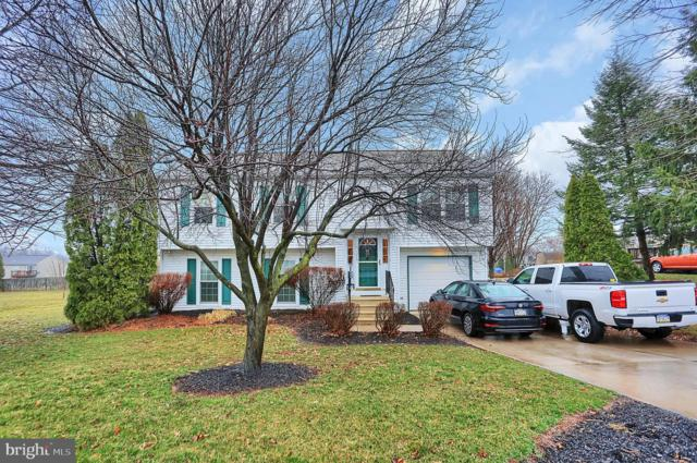 465 Shelleys Lane, ETTERS, PA 17319 (#PAYK112468) :: Teampete Realty Services, Inc
