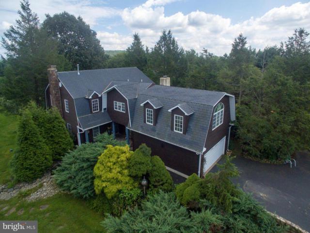 520 Summit Lane, RIEGELSVILLE, PA 18077 (#PABU446274) :: Jason Freeby Group at Keller Williams Real Estate