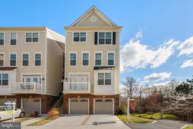 45826 Winding Branch Terrace, STERLING, VA 20166 (#VALO356500) :: Shamrock Realty Group, Inc