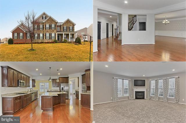 21492 Great Sky Place, BROADLANDS, VA 20148 (#VALO356502) :: Great Falls Great Homes