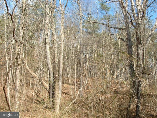 Lot 38 Brannon Ford Road, WINCHESTER, VA 22603 (#VAFV145640) :: The Putnam Group