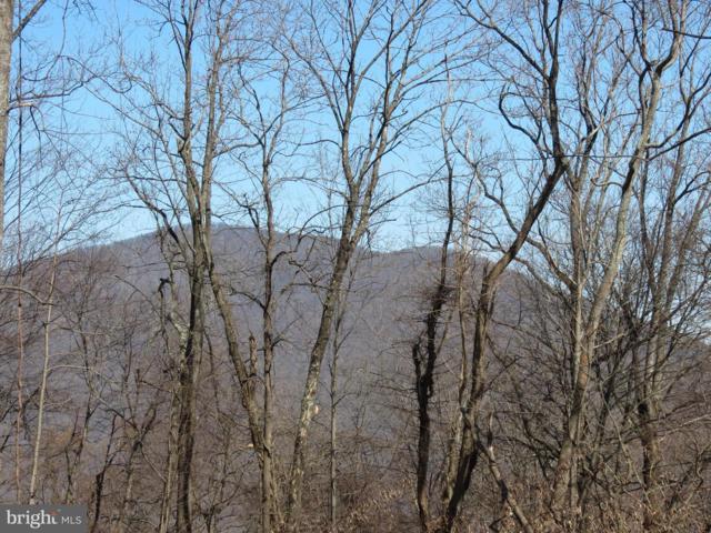 Old Ski Lodge, WASHINGTON, VA 22747 (#VARP106168) :: The Putnam Group