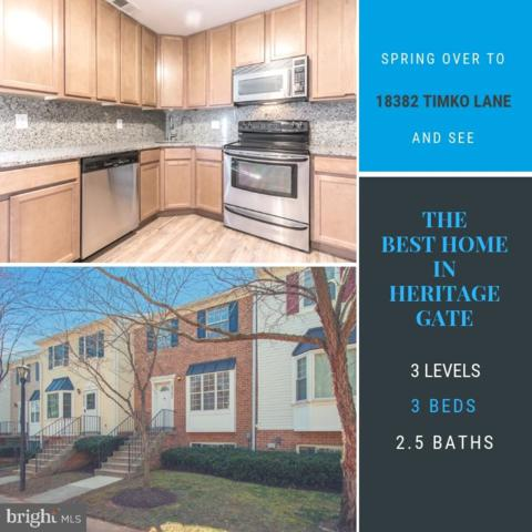 18382 Timko Lane #61, GERMANTOWN, MD 20874 (#MDMC625458) :: Labrador Real Estate Team