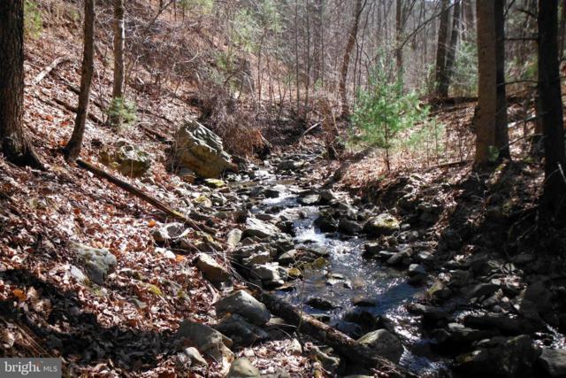 Pine Wood Trail, MILAM, WV 26838 (#WVHD104698) :: Crossman & Co. Real Estate