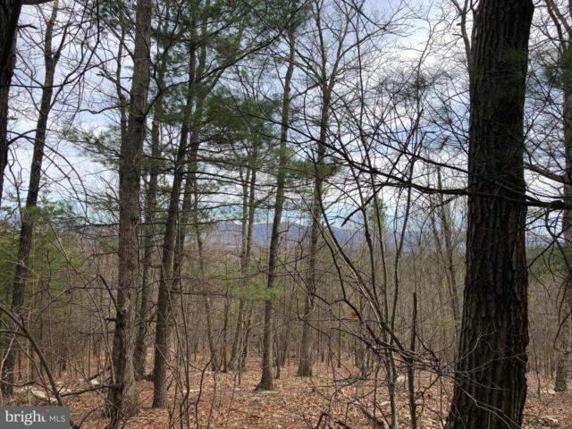 Mountain Road, FRONT ROYAL, VA 22630 (#VAWR134108) :: Pearson Smith Realty