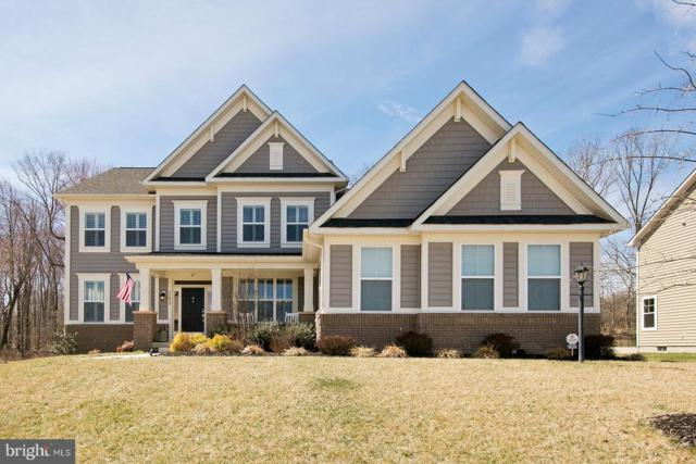 23859 Grayhaven Place, ALDIE, VA 20105 (#VALO356650) :: Colgan Real Estate
