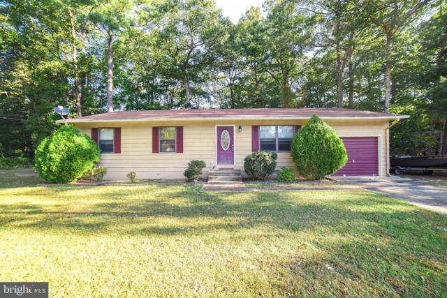 21620 America Street, LEXINGTON PARK, MD 20653 (#MDSM158344) :: Remax Preferred | Scott Kompa Group