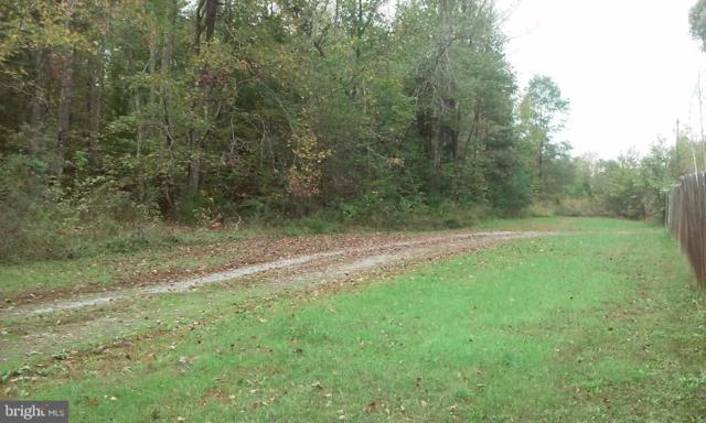 000 Buckner Road, BUMPASS, VA 23024 (#VALA117794) :: The Putnam Group