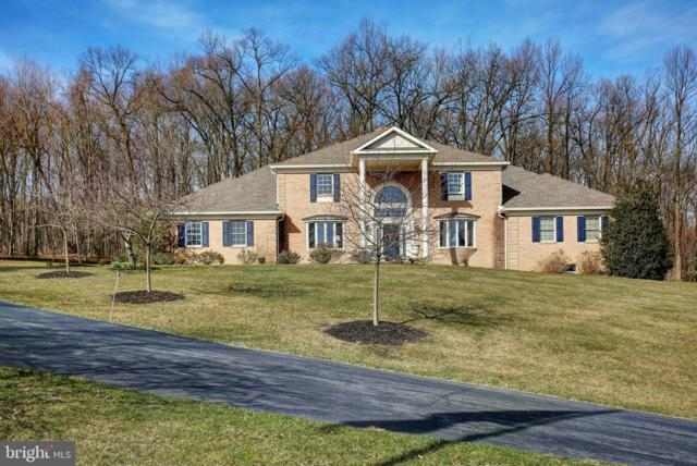 623 Whitetail Drive, LEWISBERRY, PA 17339 (#PAYK112744) :: Liz Hamberger Real Estate Team of KW Keystone Realty