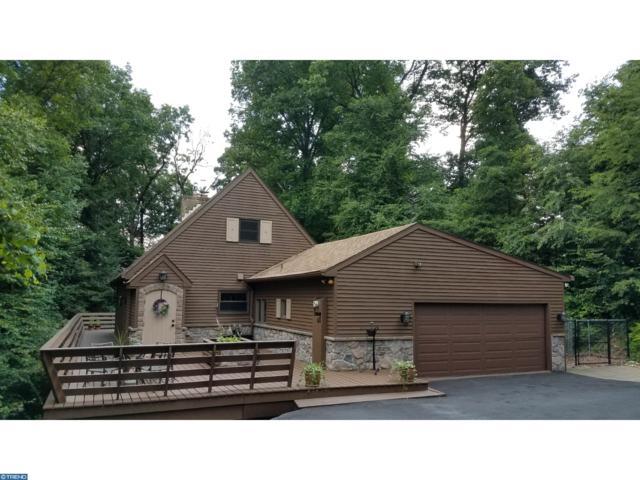 212 Winding Way, WERNERSVILLE, PA 19565 (#PABK337644) :: Colgan Real Estate