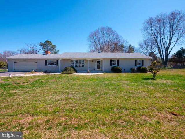 209 Beachside Drive, STEVENSVILLE, MD 21666 (#MDQA138966) :: The Gus Anthony Team